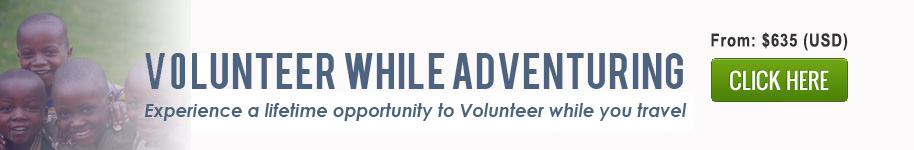 Volunteer While Adventuring