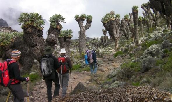 Mt Kilimanjaro Packing List