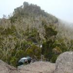 Climbing Mt Kilimanjaro Rongai Route