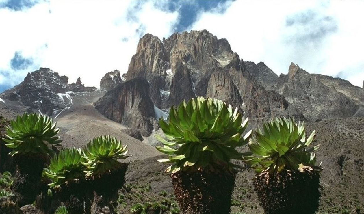 Sanitation on Mount Kenya